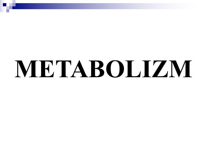 Metabolizm 2018-2019